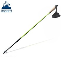 Hot popular telescopic nordic elderly walking stick for old