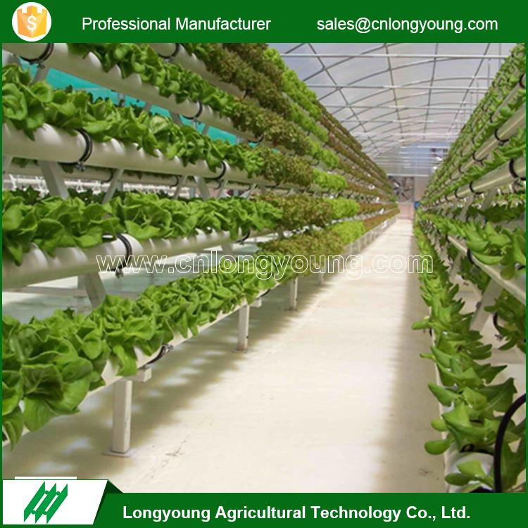 Professional commercial climate control greenhouse hydroponic systems