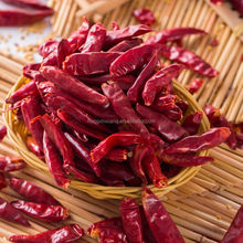 Manufactuer Dried red chilli with high quality