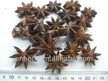 Dried Star anise as spices