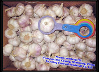 2015 Chinese Fresh Natural Garlic 5.5cm