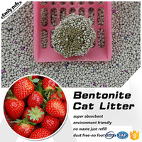 Wholesale pet cleaning super absorbing clumping cat litter