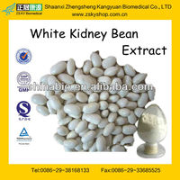 GMP Certified Manufacturer Supply Natural White Kidney Beans Extract 10:1