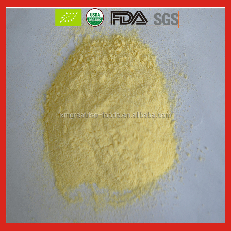 High Quality Organic Freeze Dried Mango/ Freeze Dried Mango Powder in Bulk