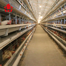best hen poultry farm equipment frame high quality cheaper price battery cages for egg layer chickens