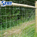 galvanized welded wire mesh sheep fence (ISO9001:2000 factory)