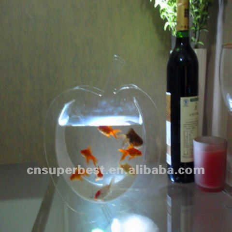 Clear oval shape Acrylic aquarium