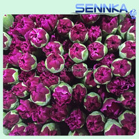 Summer cut carnation flowers turkey izmir gerbera mini carnation spray carnation Flower Explosion