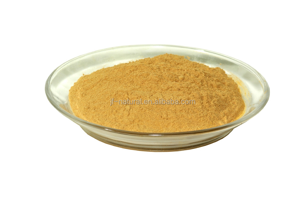 Ginkgo Leaf Extract ISO, GMP, HACCP, KOSHER, HALAL certificated