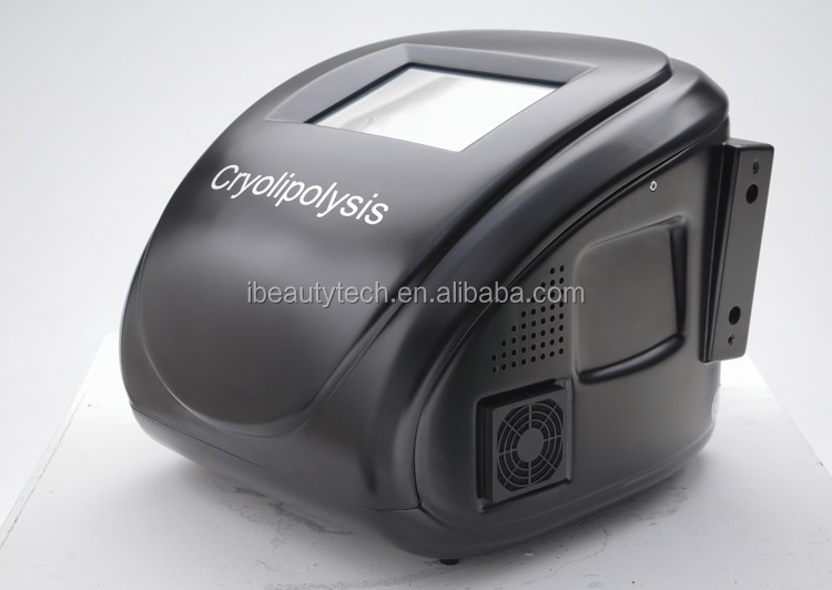 weight loss portable criolipolise cryotherapy machine