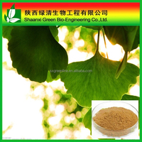 High Quality Gmp Factory Supply Ginkgo