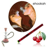 2013 e hookah disposable electronic hookah e shisha in shenzhen