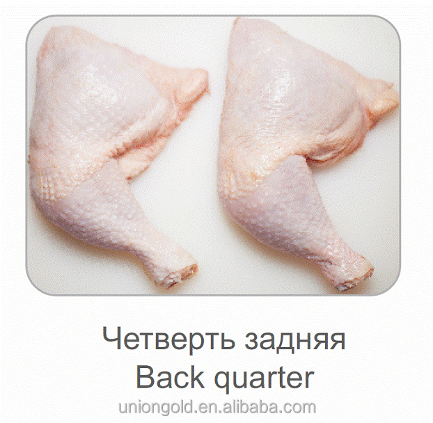 Ukrainian Halal Frozen Chicken Leg Quarter