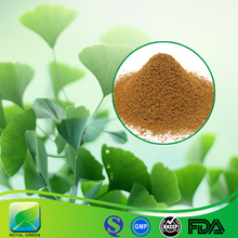 100% Natural Factory Wholesale Ginkgo Biloba Leaf Extract in Bulk