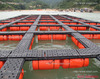 HDPE Malawi fish farming floating cage tilapia fingerling nursery