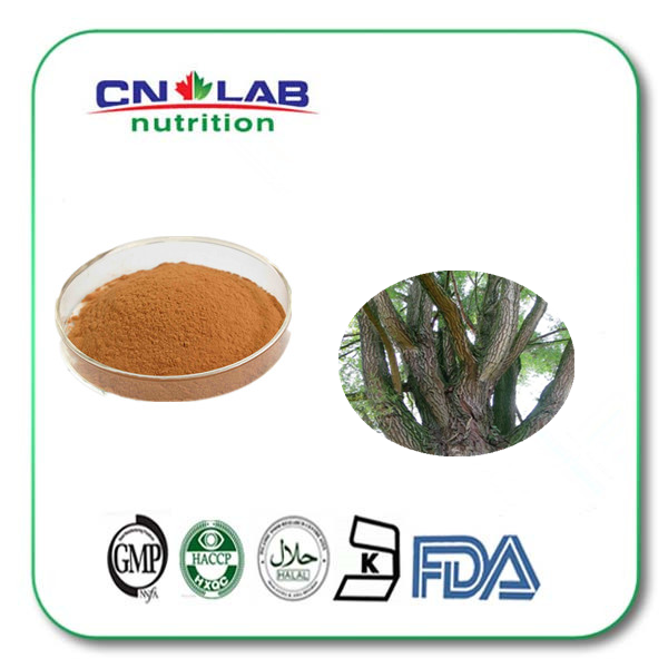 white willow bark extract salicin 98% by HPLC Salix babylonicaL extract