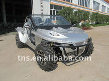 TNS new fashion 1300cc offroad buggy for sale