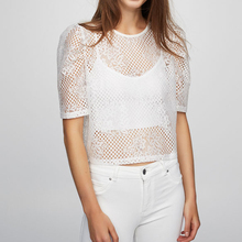 lace white net crop top