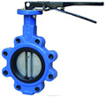 Cast iron Lug type butterfly valves