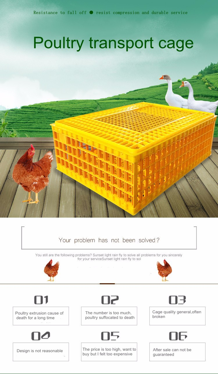 transportation crate for poultry farm used
