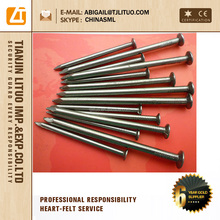 bright polished 6d 7d 8d common wire nail
