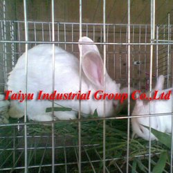 factory-ISO9001 rabbit cage