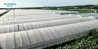 baolida high performance PE film tunnel green house for strawberry