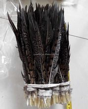 factory wholesale carnival decoration collared pheasant tail feather