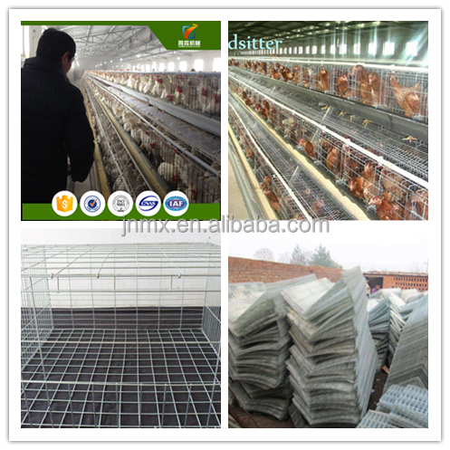 broiler battery type breeding chicken cage