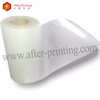 100 micron Glossy and Matte Transparent BOPET Polyester Film