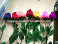 Feather Flower/Feather Rose/Feather mount