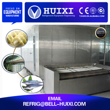 Quick Freezing Freezers / Freezing Fish Equipment /IQF Tunnel Freezer