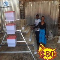 mabwawa mtoto/2015 new products uganda poultry farm automatic chicken layer cage