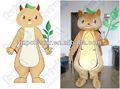 custom lovely squirrel mascot costumes