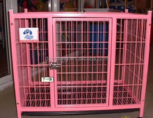 New iron dog kennel with best price