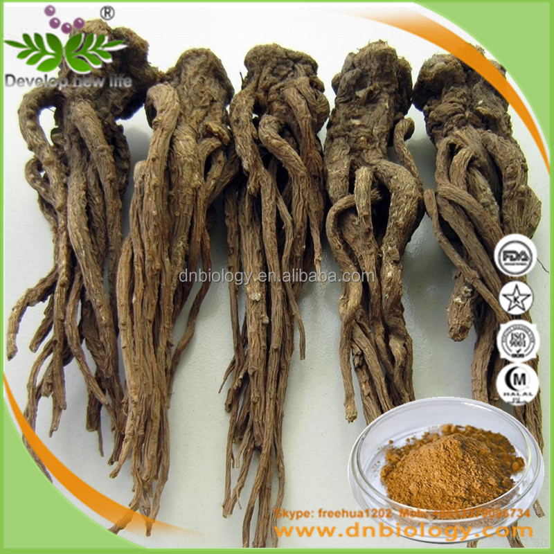 health & medical dong quai extract powder, angelica sinensis, Dong Quai with free sample
