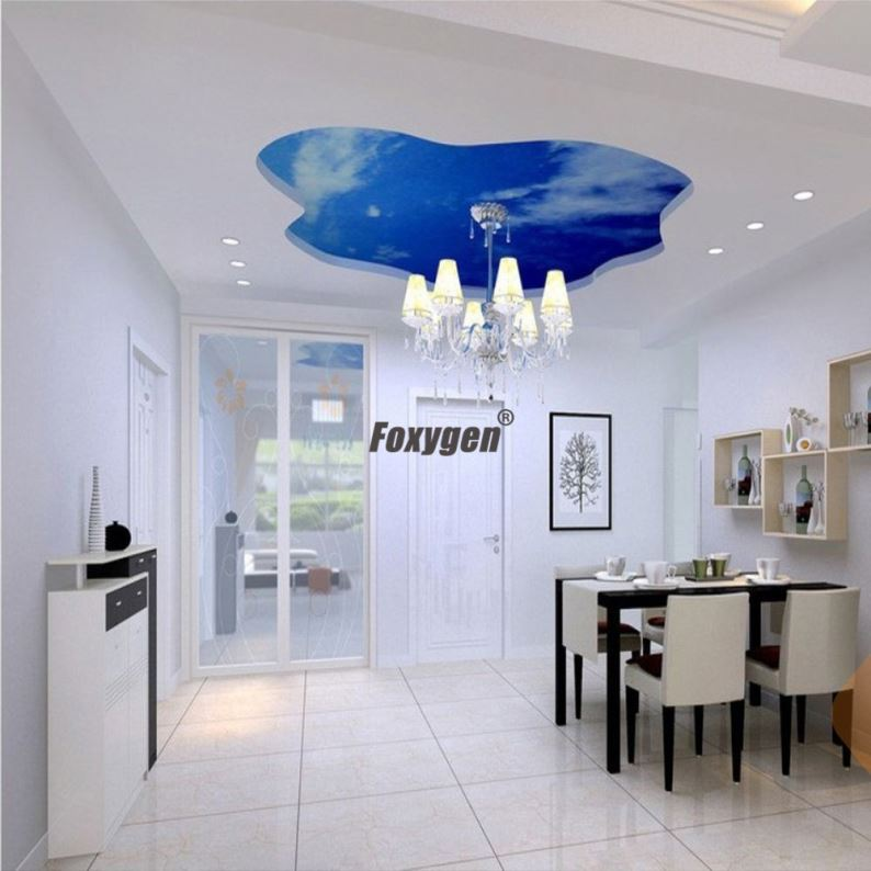 project factory cheapest building material pvc - Cheapest Ceiling Material