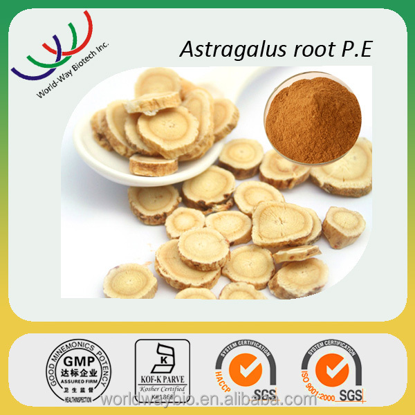 Free samples Natural herbal extract powder 50% polysaccharides astragalus extract from root
