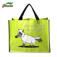 Customer made Eco friendly recyclable folding image woven polypropylene bag