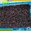 With Professionalteam Organic frozen blackberry fruits in bulk