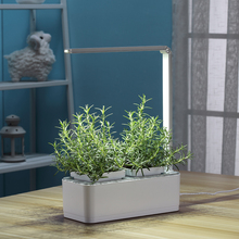 Wholesale Vertical Garden Plants In Vertical Creative Smart Led Light Salad Green Grower Hydroponic Flower Pot