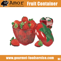 Red Strawberry Storage Container