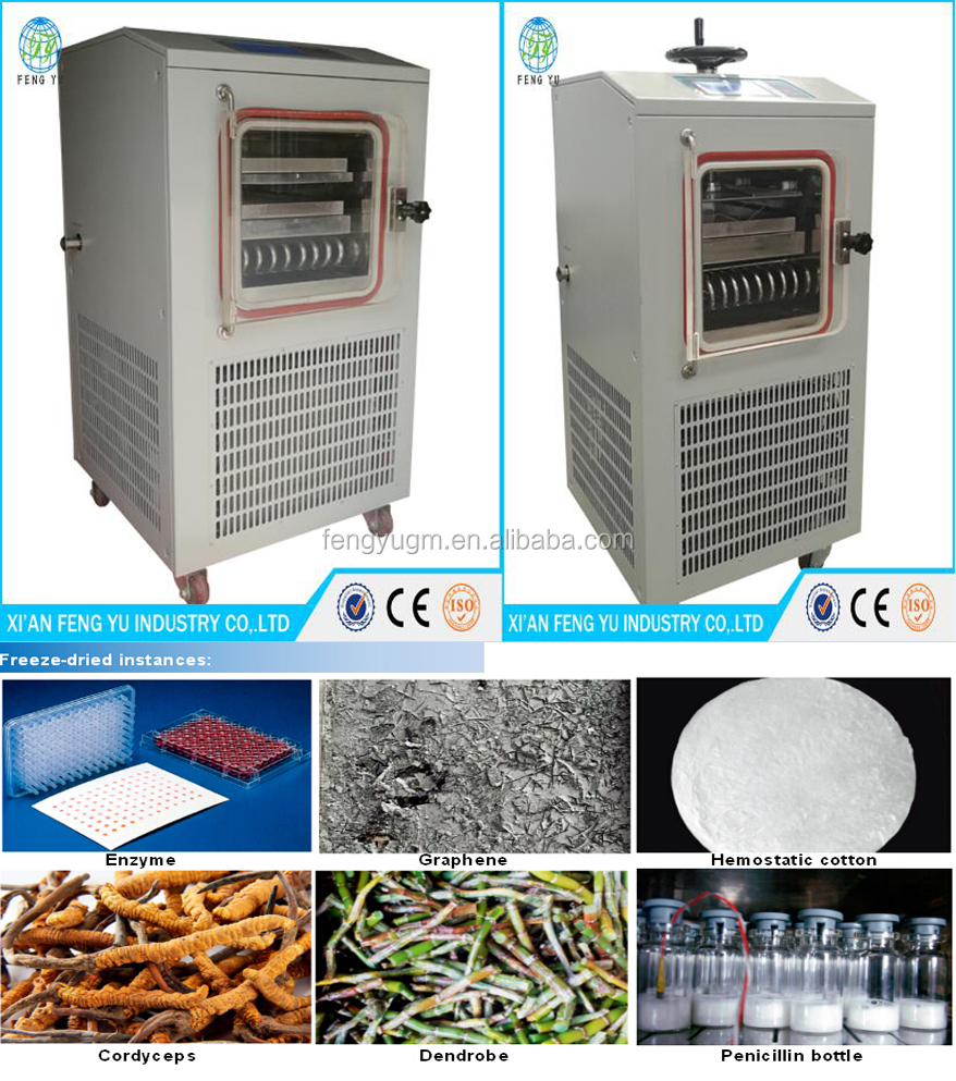 factory price cmommercial freeze drying equipment for food/vegetable freeze dryer