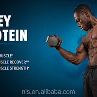 Body Building Product Whey Protein Bar