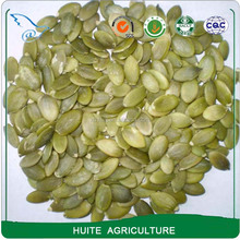 2016 Crop Pumpkin Seeds kernels without shell