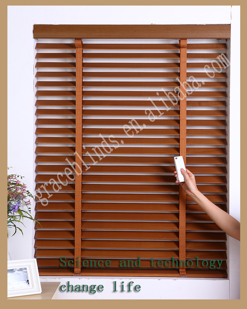 Invisible blinds lowes outdoor blinds buy invisible for Motorized window blinds lowes