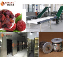 dried fruit waxberry production line