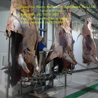 hydraulic type cattle skin removed machine