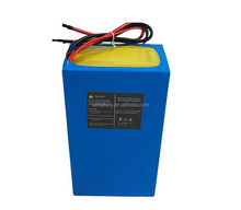 LiFePO4 Ebike Battery Pack 48V 20Ah 1000W electric bicycle battery with BMS
