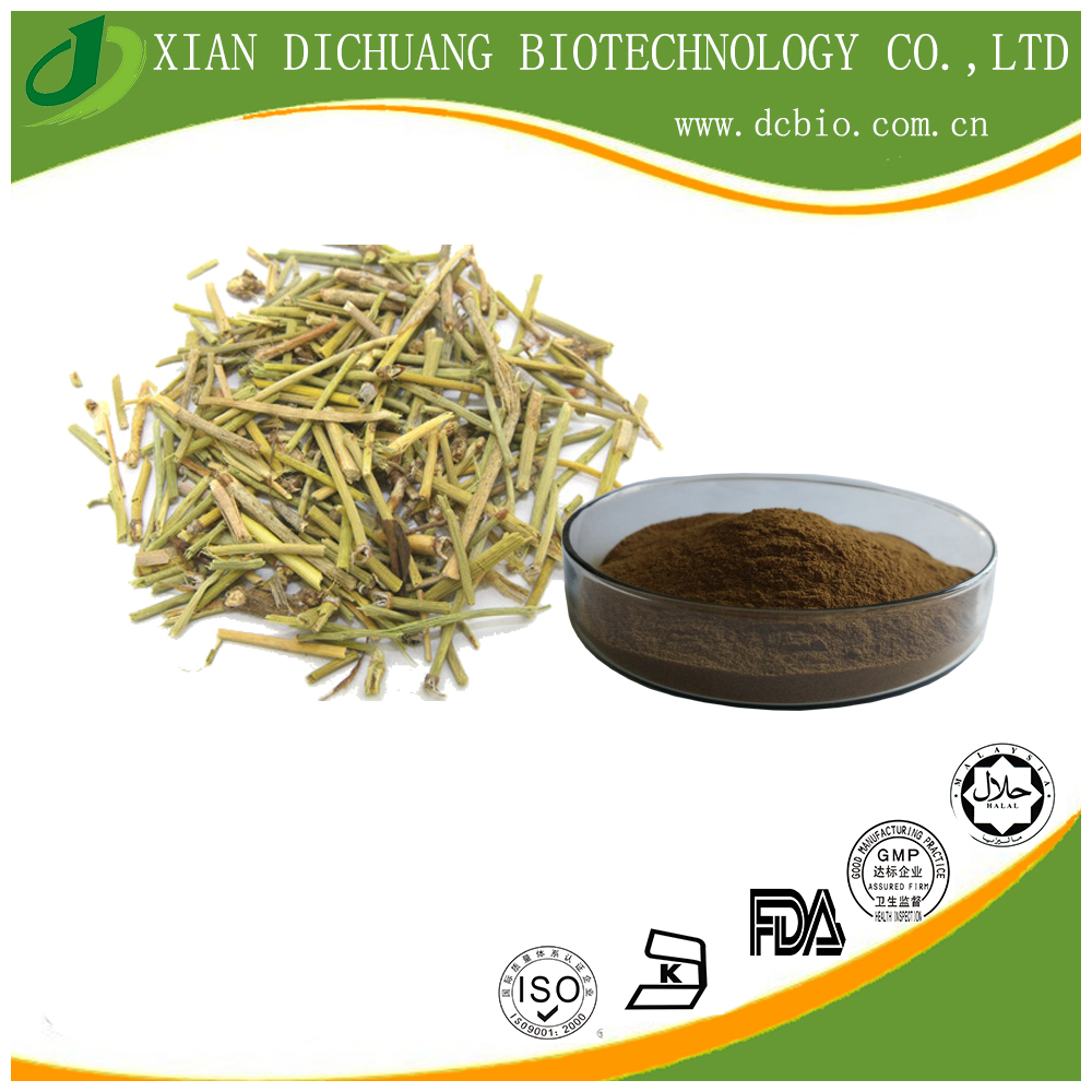 100%Natural Ma Huang Extract /Ephedra Sinica Stapf Extract Powder TLC 10:1 20:1 Lower Blood Pressure